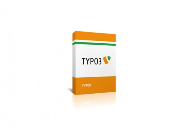 Установлю на хостинг TYPO3 1 - kwork.ru