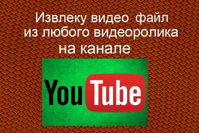 Извлеку видео файл 1 - kwork.ru