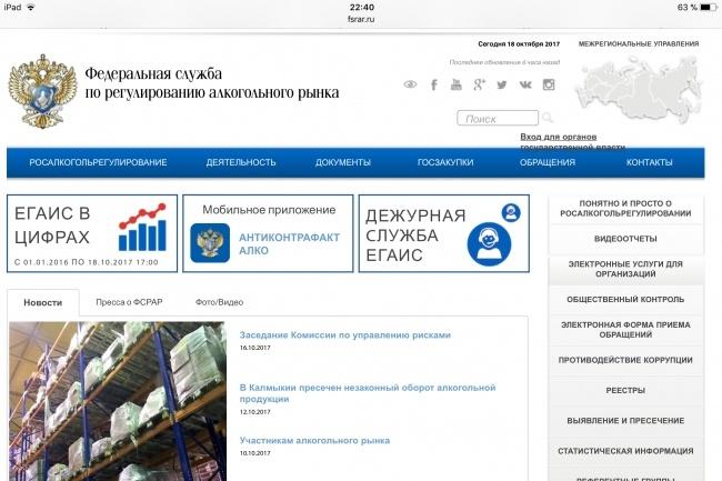 Отвечу на вопросы по сдаче декларации в Росалкогольрегулирование 1 - kwork.ru