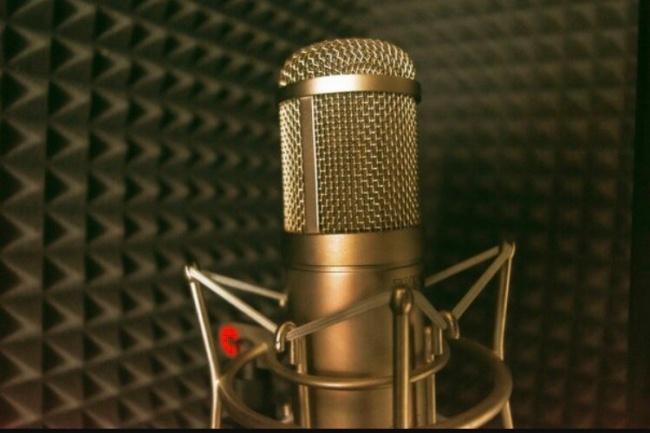Работа с аудиоРедактирование аудио<br>Вытащу аудио из видео (работаю со всеми исходниками: сайтами и тд), сохраню в любом удобном для Вас формате. Очищу от лишних шумов. Переведу моно сигнал в стерео, стерео формат в 5. 1<br>