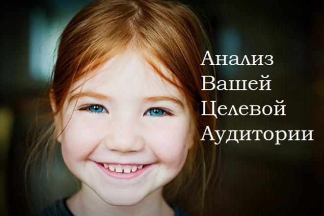 сделаю профессиональный анализ вашей целевой аудитории 1 - kwork.ru