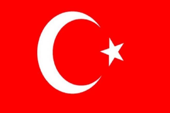Профессионально переведу с Турецкого и на Турецкий 1 - kwork.ru