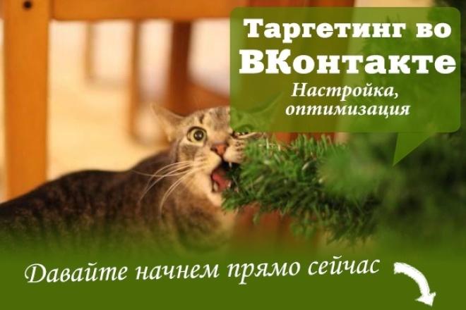 Настроим Таргетинговую Рекламу во ВКонтакте 1 - kwork.ru