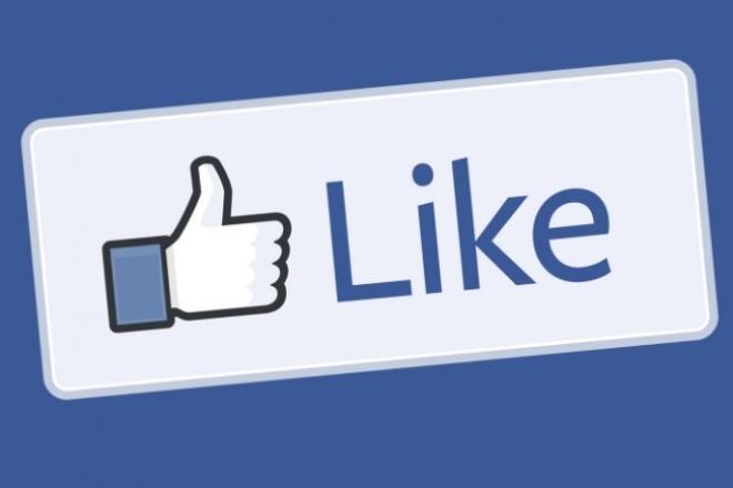 +3000 лайков на ваш пост, фото или видео FaceBook 1 - kwork.ru