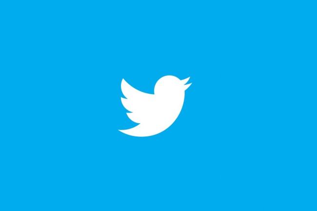 Прогоню сайт по Twitter 1 - kwork.ru