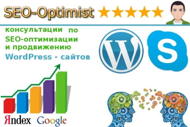 Консультации по SEO-оптимизации и продвижению WordPress сайтов в Skype 1 - kwork.ru
