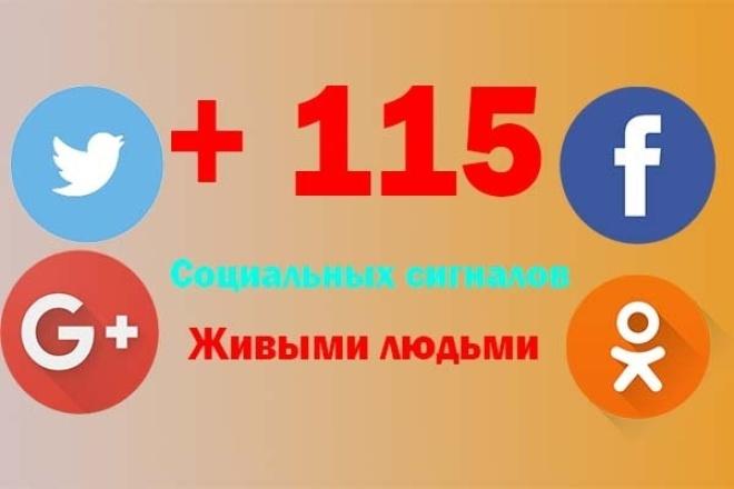115 соц. сигналов с различных сетей G+, FB, TW, ОД 1 - kwork.ru