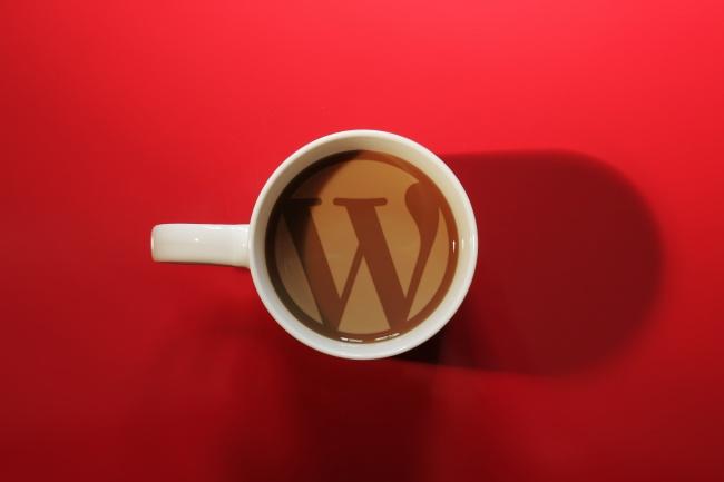 Установка WordPressАдминистрирование и настройка<br>Установка CMS WordPress на ваш хостинг... Настройка системы управления сайтом WordPress под ваши нужды...<br>