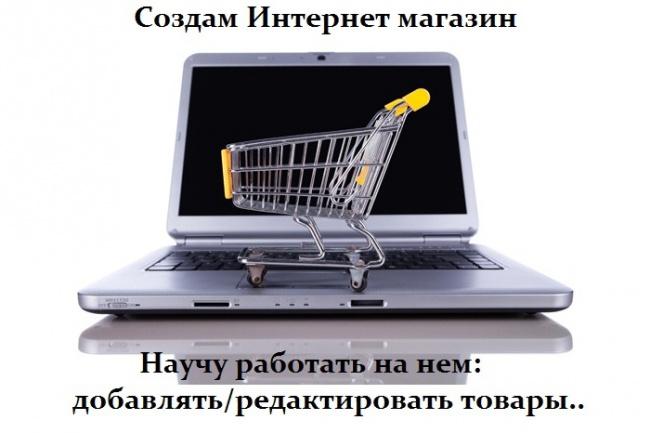 Создам для Вас Интернет магазин и научу добавлять товары 1 - kwork.ru