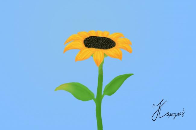 Нарисую в фотошопеИллюстрации и рисунки<br>Рисую в программе Photoshop по Вашим эскизам и идеям. В качестве примеров - нарисованный за полтора часа подсолнух и нарисованный за 3 часа попугай. Детали отрисовываю на графическом планшете. Сложность работы зависит от необходимой Вам детализации и количества основных цветов.<br>