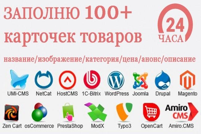 Заполню 100 карточек товаров 1 - kwork.ru