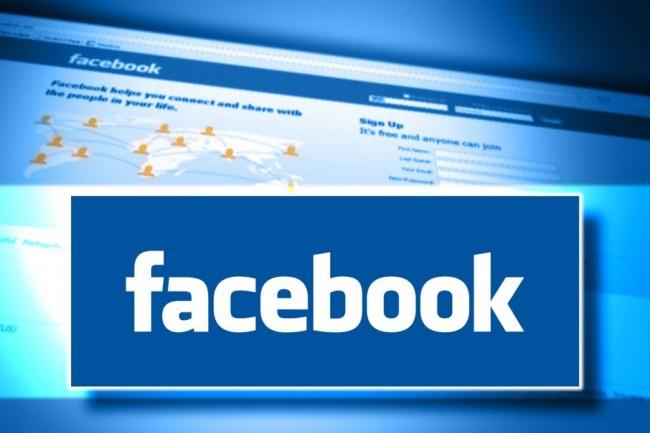 Добавление живых участников в группы facebook 3 000 человек 1 - kwork.ru