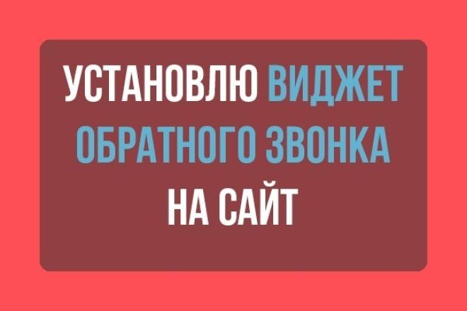 установлю виджет обратного звонка 1 - kwork.ru