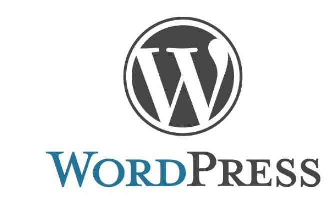 исправить одну проблему на своем сайте в WordPress 1 - kwork.ru