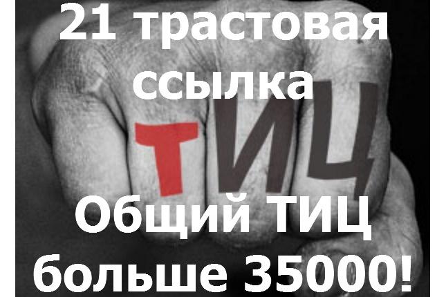 Ссылки. Размещу вашу ссылку на 21 трастовом сайте. ТИЦ 950-10000 1 - kwork.ru