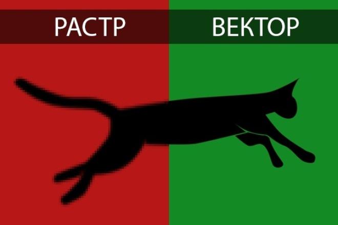 отрисую растр в вектор 1 - kwork.ru