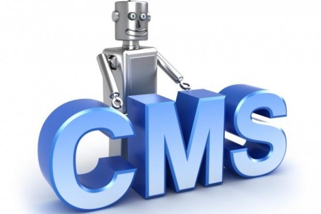 установлю скрипт или CMS на хостинг 1 - kwork.ru