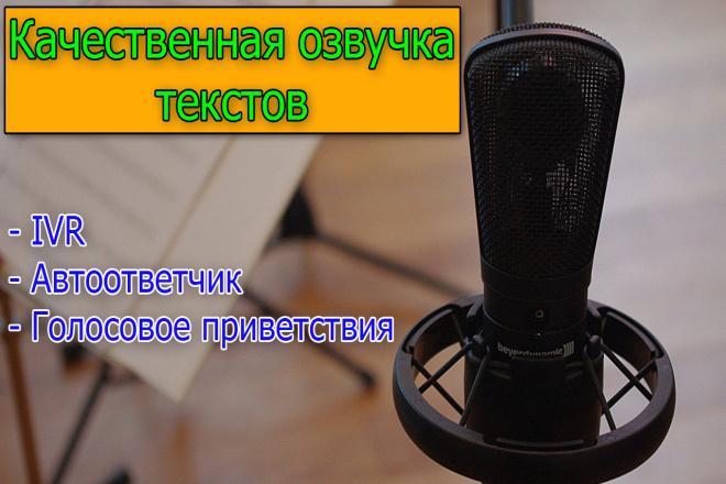 Быстро и качественно озвучим ваш текст 1 - kwork.ru