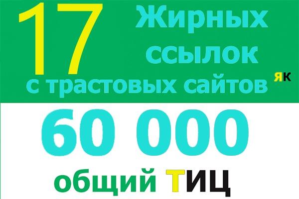 Поставлю 17 вечных жирных ссылок с трастовых сайтов ТИЦ 60 000 1 - kwork.ru
