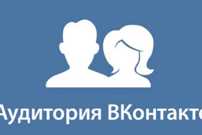 привлеку 300 подписчиков ВК 1 - kwork.ru