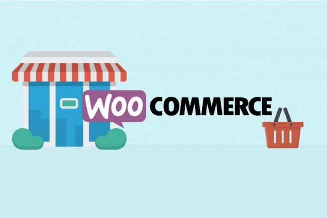 Научу создавать интернет-магазин на Wordpress за 45 мин 1 - kwork.ru