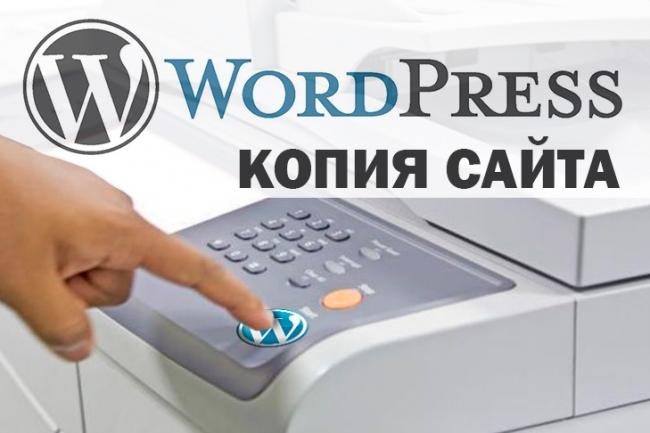 Скопирую сайт и установлю на WordPress 1 - kwork.ru