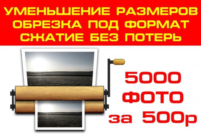 Уменьшу, обрежу под размер, сожму без потерь 5000 ваших фото 1 - kwork.ru