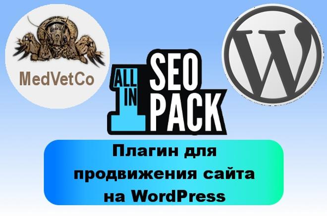 WordPress: установка и настройка плагина для поискового продвиженияДоработка сайтов<br>All In One SEO Pack - это плагин WordPress, который поможет владельцу сайта эффективно продвигаться в Интернете. Мной неоднократно производилась настройка этого плагина и его заточка под разнообразные задачи, поэтому рекомендую заказать этот кворк, если Вы задумались о эффективном продвижении своего сайта. Также в качестве опции готов за Вас произвести заполнение мета-тэгов title, description и keywords для уже имеющихся страниц. Если требуется, чтобы записями и страницами пользователи делились в социальных сетях, дополнительно произведу микроразметку Open Graph и Twitter Cards. Пожалуйста, прежде, чем заказать кворк, свяжитесь со мной через личные сообщения, чтобы обсудить детали.<br>