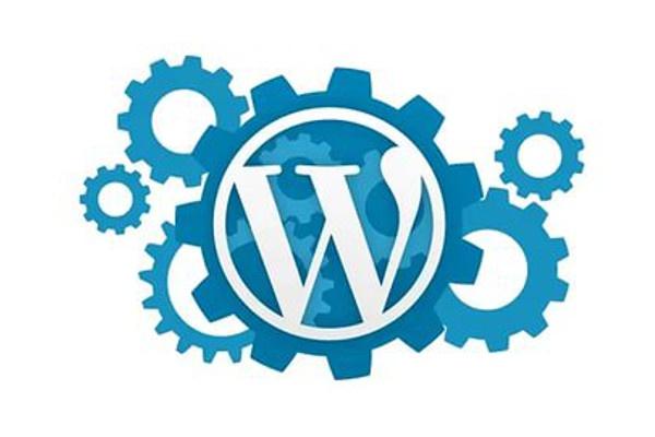 Установлю и настрою сайт на WordPress 1 - kwork.ru