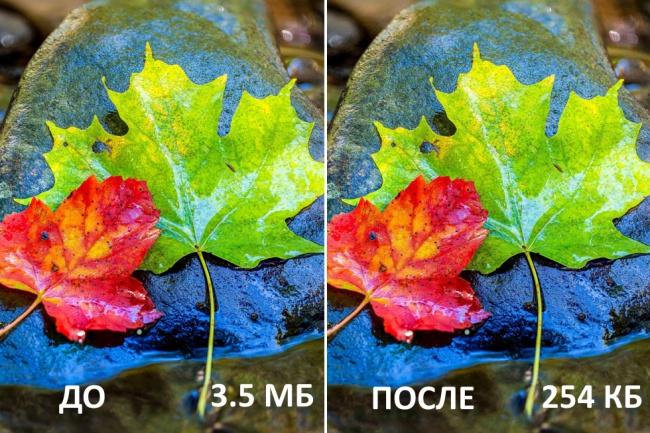 Уменьшу вес до 1000 изображений без потери качества 1 - kwork.ru