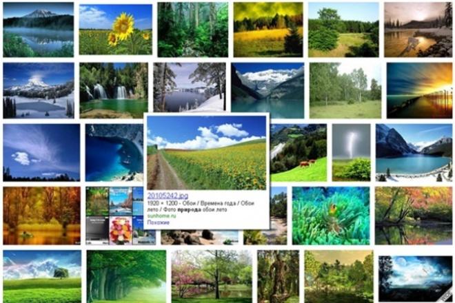 Найду 500 картинок по теме из разных источников 1 - kwork.ru