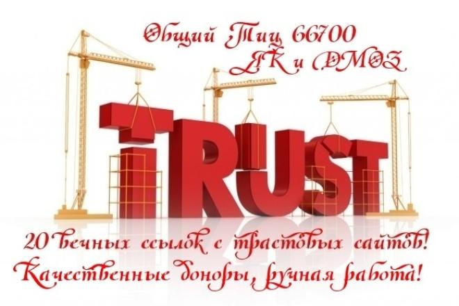 """20 """"жирных"""" вечных ссылок, средний Тиц > 3300, качественные доноры 1 - kwork.ru"""