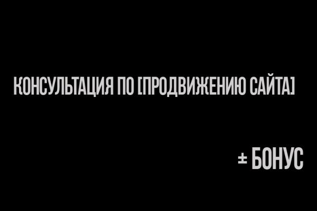 Консультация по [Продвижению сайта] + Бонус 1 - kwork.ru