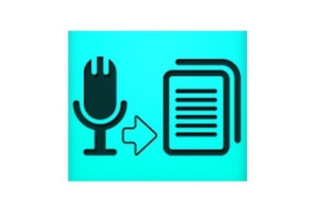 набираю тексты, транскрибирую аудио/видео в текст 1 - kwork.ru