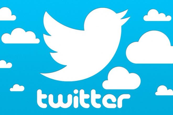 Прокачаю ваш Твиттер аккаунт: +2500 фолловеров (подписчиков) в Twitter 1 - kwork.ru