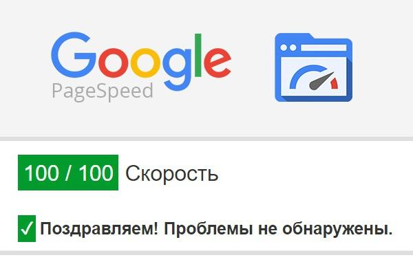 Оптимизирую сайт до показателя 90+ на Google Page Speed 1 - kwork.ru