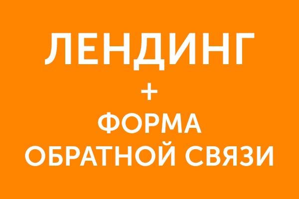Лендинг с формой обратной связи под ключ 1 - kwork.ru