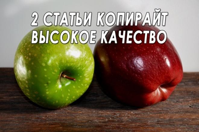 Напишу 2 качественные статьи для сайта 1 - kwork.ru