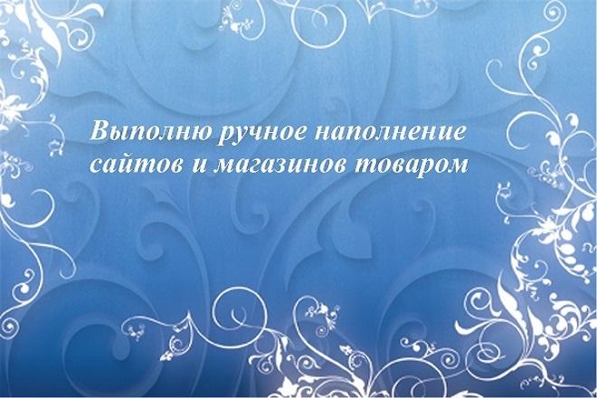 Выполню ручное наполнение сайтов и магазинов товаром 1 - kwork.ru