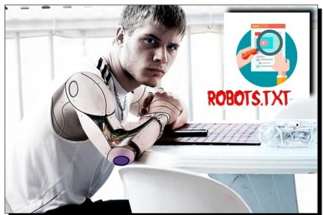 Отредактирую или создам файл robots.TXT для вашей CMS 1 - kwork.ru