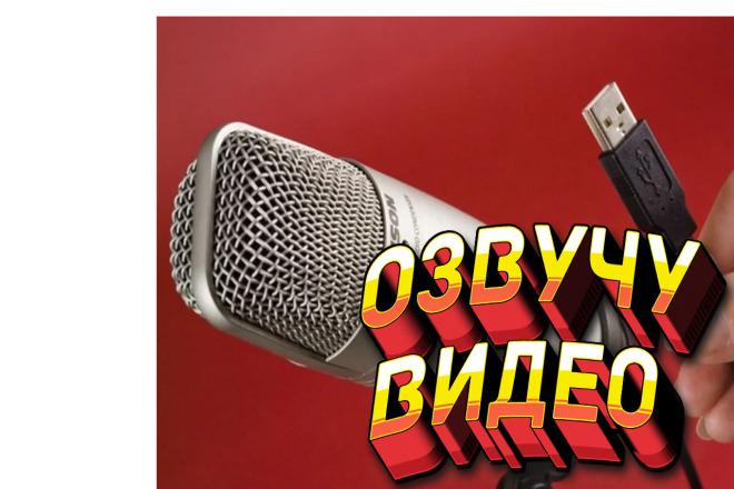 Озвучу ваше видео , быстро и качественно 1 - kwork.ru