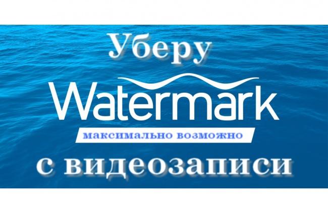 Уберу водяные знаки с видео максимально возможно -Watermark 1 - kwork.ru