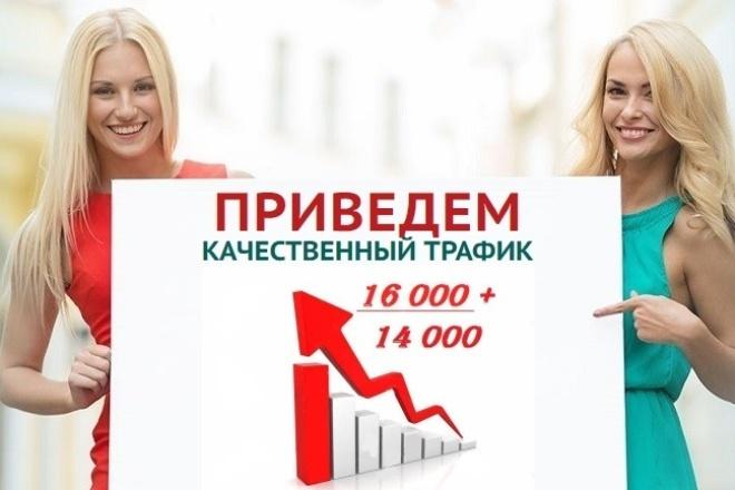 14000-16000 уникальных посетителей на ваш сайт из поисковиков 1 - kwork.ru