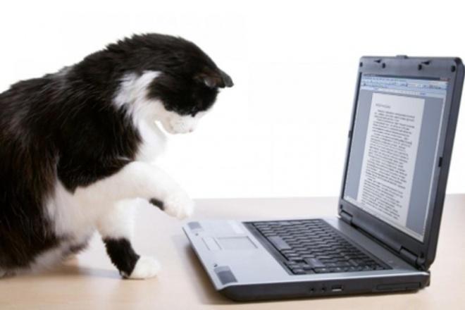 Наберу текстНабор текста<br>Наберу текст со сканов и фотографий книг, документов, рукописей, видео- и аудиозаписей. Быстро, качественно и грамотно. Форматы текстовых документов - *.txt, *.rtf, *.doc, *.docx<br>