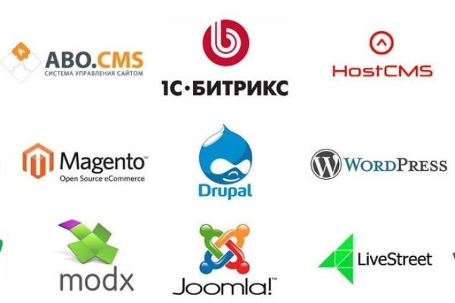 Доделаю CMS сайт 1 - kwork.ru
