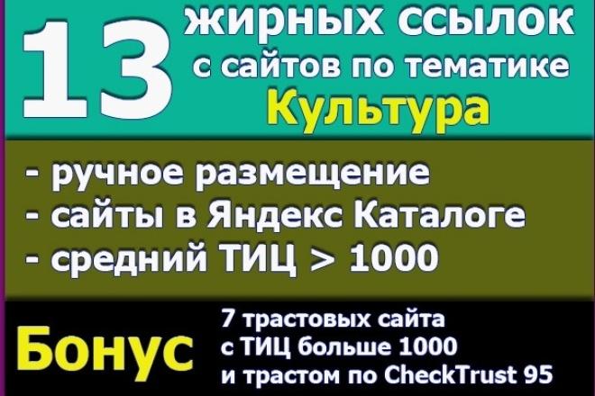 13 жирных ссылок с сайтов по тематике Культура, кино, музыка. Бонус 1 - kwork.ru