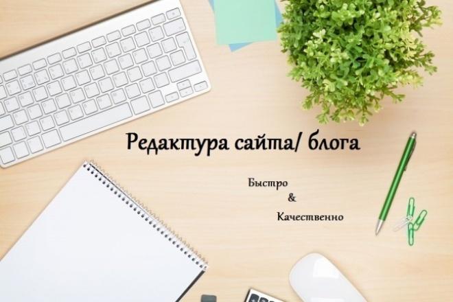 Отредактирую страницы Вашего сайта или блога 1 - kwork.ru