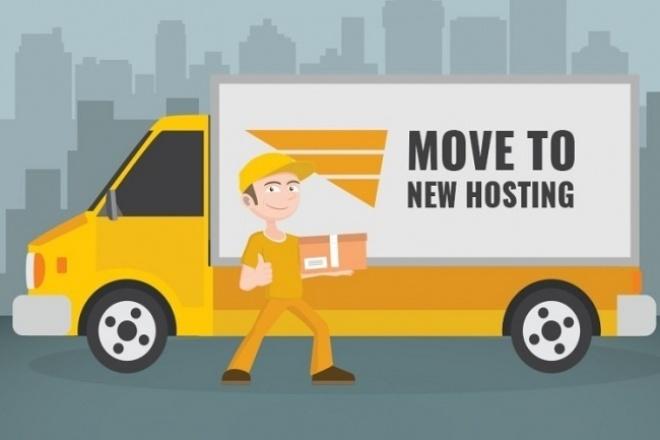 Перенесу ваш сайт на новый домен или хостинг 1 - kwork.ru