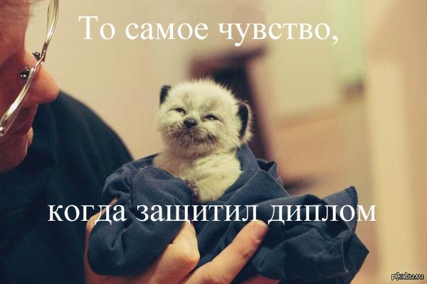 подниму оригинальность текста 1 - kwork.ru