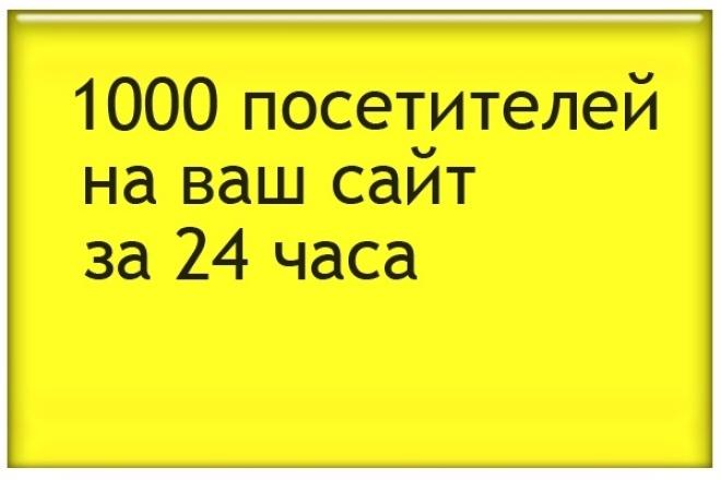 Направлю на ваш сайт 1000 человек 1 - kwork.ru